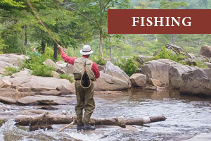 White Mountains Fishing