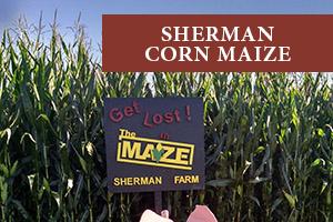 Sherman Corn Maize is a fun white mountain fall foliage activity