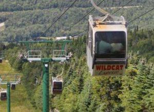 Wildcat Mountain Gondola Ride