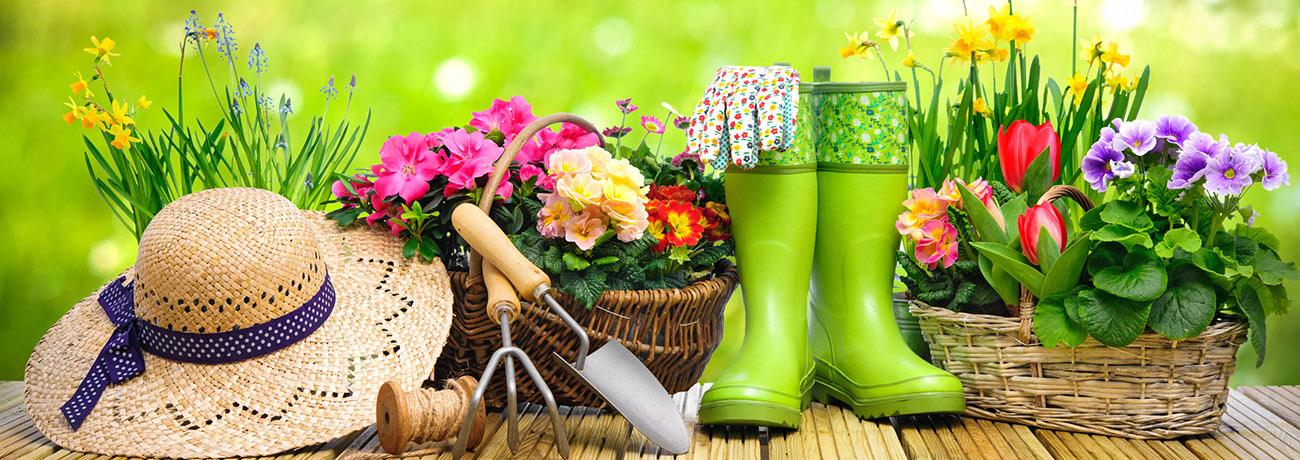 Fryeburg Home Garden Flower Show