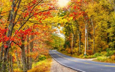 Boston Globe's 3 Fall Foliage Trips Your Kids Might Actually Enjoy