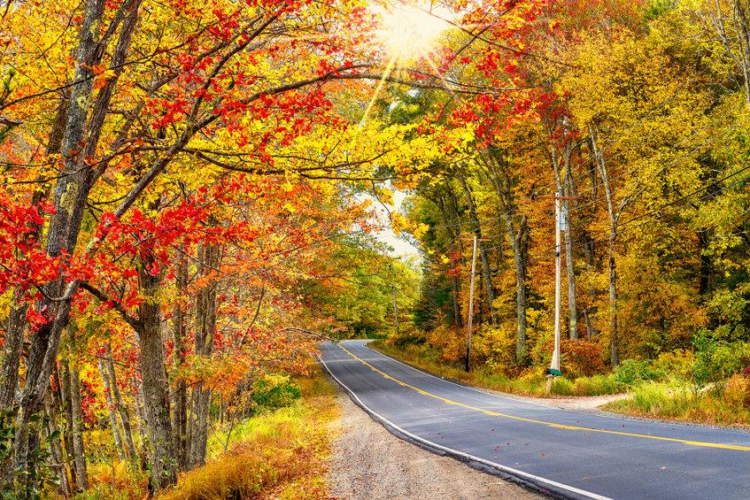 boston globe fall foliage trips